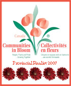 Communities in Bloom Logo 2007